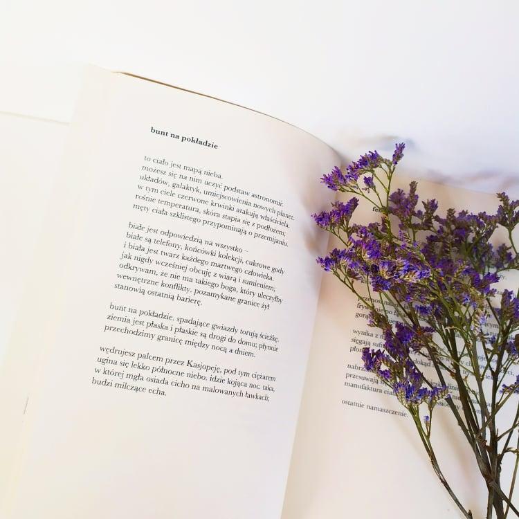 Coleoptera Anna Musiał Recenzenckiblog